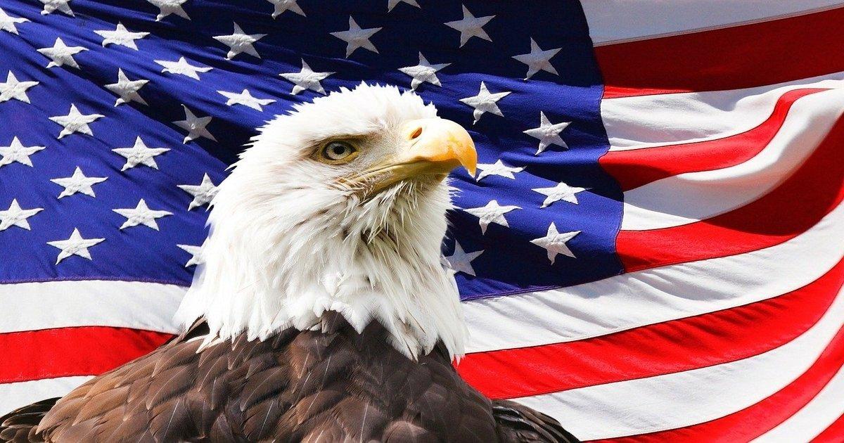freedom principles